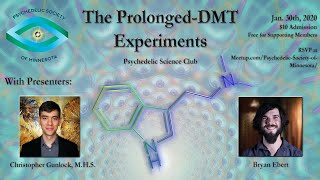 Extended State DMT with Christopher Gunlock and Bryan Ebert