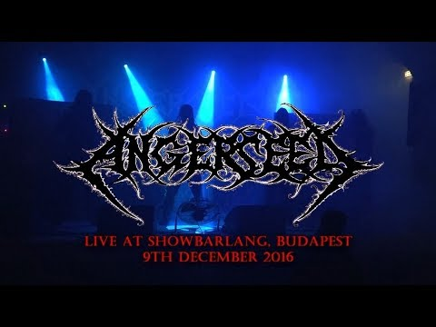 ANGERSEED - Live in Budapest (HU), 2016.12.09. FULL SHOW (HD)