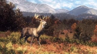 Big Game Hunter 2014 - Охота на кабана #2