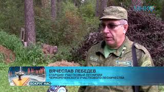видео Недвижимость Луховиц