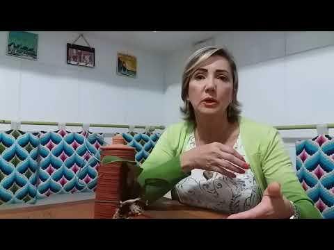 CULTIVO ORQUIDEA NO PAU DE BARRO ACERTANDO A UMIDADE