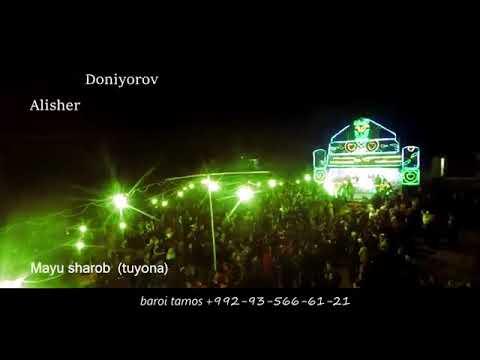 Alishir .Doniyrov  Mayu  sharob. (tuyona).2018.
