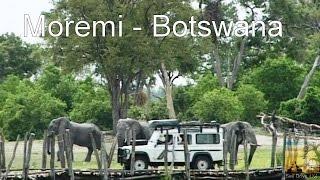 Self Drive Moremi Botswana