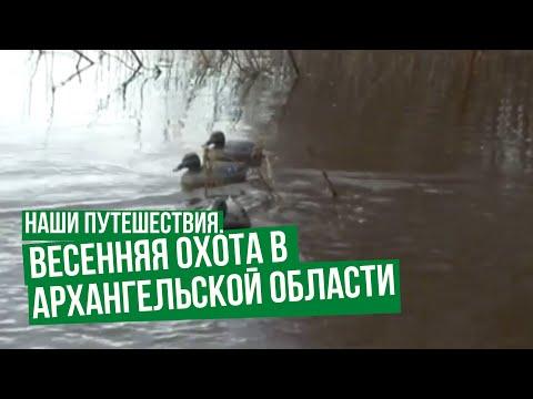 Наши путешествия. Весенняя охота в Архангельской области