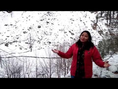 Christian Song || Sirf Tu Yeshu || Latest Worship Song || Nancy Brown