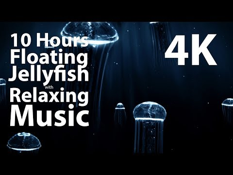 4K UHD 10 Hour - Floating Jellyfish & Relaxing Music - Calm, Meditation, Nature