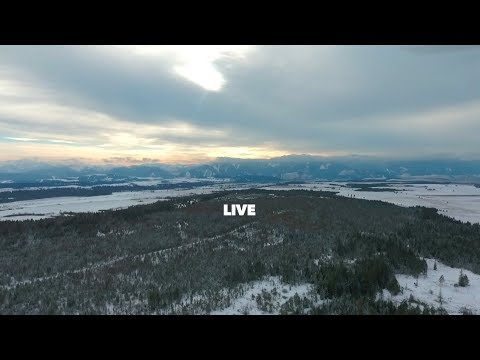 Flying Above Frozen Forest in Slovakia