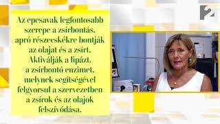 helminták az epevezetékben)