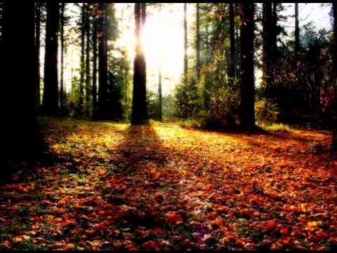 Красавица-осень