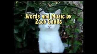 CABBIT, THE AMAZING CAT RABBIT!!!