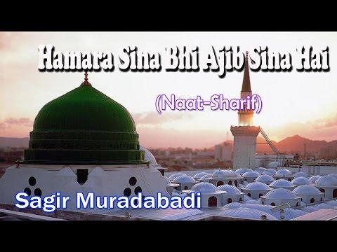 Hamara Sina Bhi Ajib Sina Hai ☪☪ Latest Naat Sharif New Videos ☪☪ Sagir Muradabadi [HD]