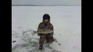 Ловля судака и щуки на ставки, жерлицы. Зимняя рыбалка на Минском море в сильный ветер