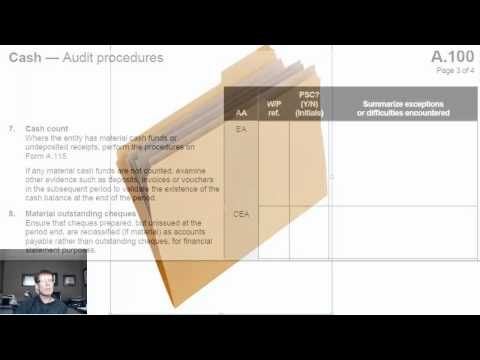 13 Auditor Working Papers