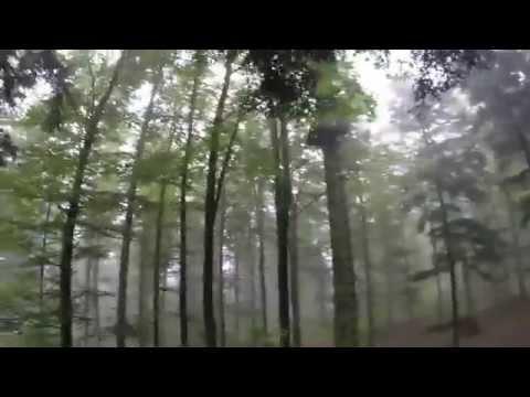 Parc Alsace Aventure [HD]