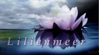 Lacrimas Profundere - Lilienmeer