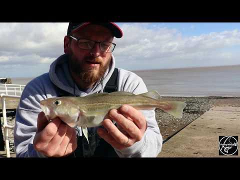 Fishing ROCKS Episode 3... Early Spring Shore Fishing Penarth Beach/ Cardiff.