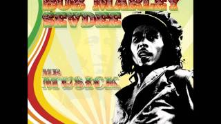 Is This Love-Bob Marley & Sevdee Mr. Musick