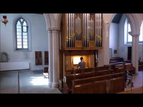 JS Bach Complete Organ Works   VI