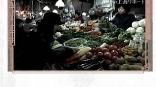 中国語会話18課より:ショッピング Rola-Chen in Shanghai 陳怡上海报...