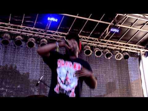 """The White Mandingos perform """"The Ghetto Is Tryna Kill Me"""" at AFROPUNK FEST 2013"""