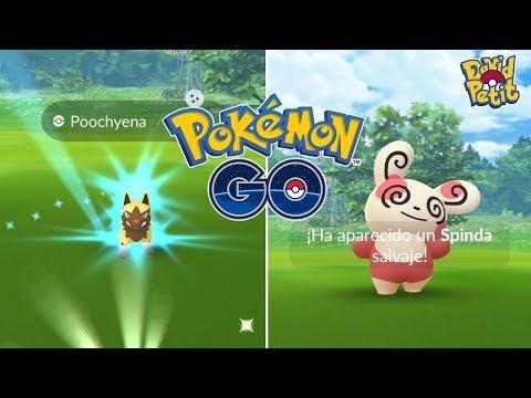 NUEVA FORMA SPINDA MÁS SHINY SORPRESA EL ÚLTIMO DÍA DE EVENTO DE LUCHA! [Pokémon GO-davidpetit] thumbnail