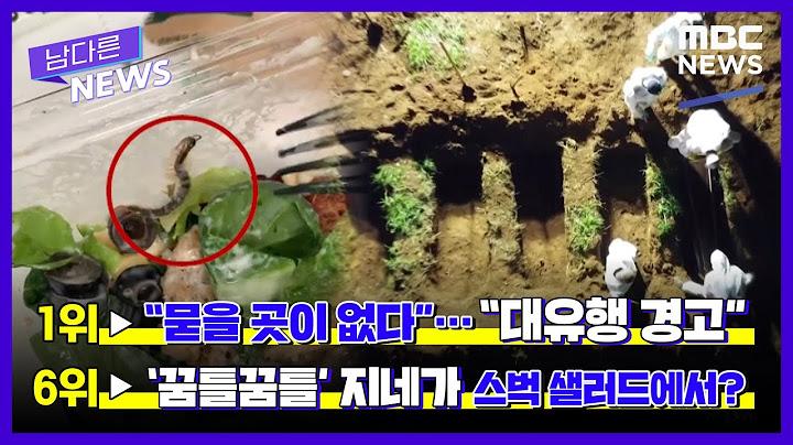 [13회] 엠보드톱텐 '유해 파내고 심야 장례' [LIVE]MBC 남다른뉴스 2021년 4월 8일