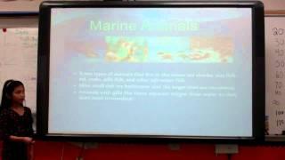 Melanie's Marine Biome Report 001