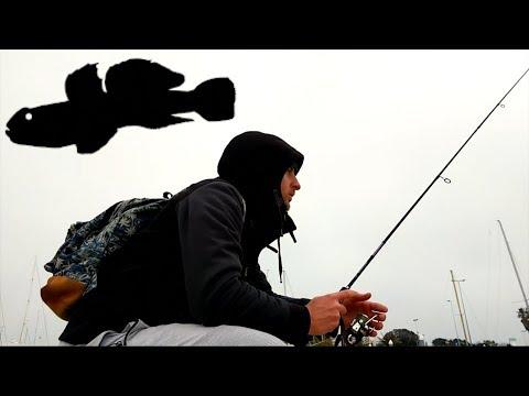 ROAD TO RIMINI! Light Rock Fishing Invernale con Innesco Double Shot