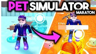 I'VE JUST BEATEN the RECORD Polish? PET SIMULATOR MARATHON • ROBLOX [#188]