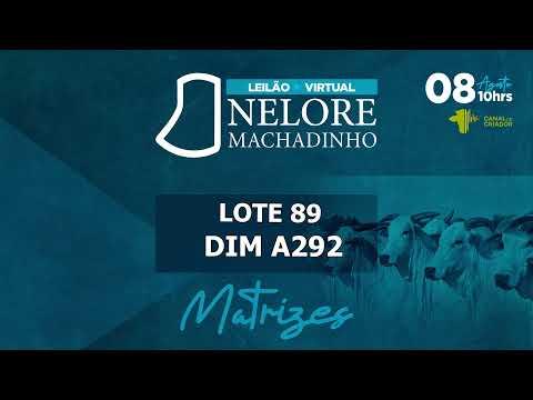 LOTE 89 DIM A292
