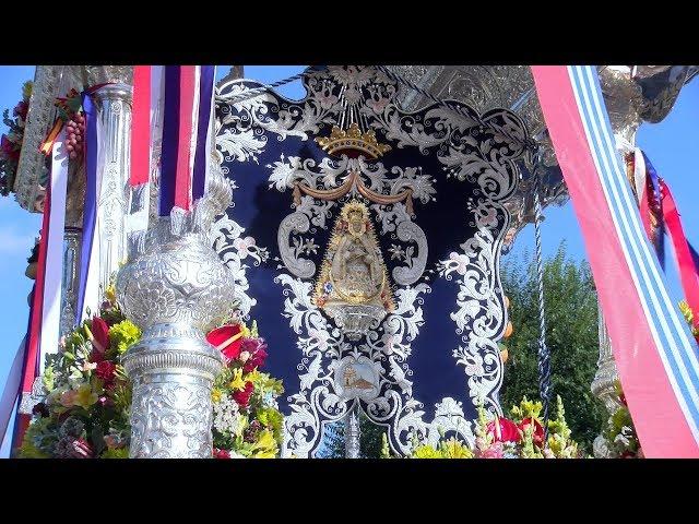 Rocío 2019 | Peregrinación de la Hdad. del Rocío de Cartaya hacia la Blanca Paloma