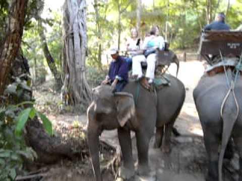 Elephant Ride Chun Chow et al