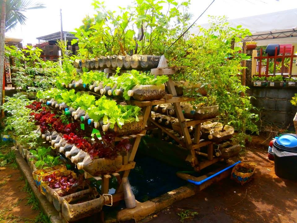 Vegetable Garden In Balcony India  Best Balcony Design Ideas Latest - Rooftop vegetable garden ideas