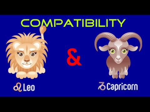 leo capricorn compatibility sexually
