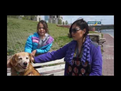 """My day in Kazakhstan"" #11 (04.06.2016)-Kazakh TV-eng"
