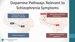 Psychopharmacology - Antipsychotics & The Dopamine Hypothesis Schizophrenia