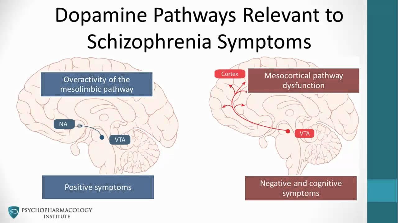 psychosis dopamine