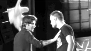 Ziam | The hearts wants what it wants