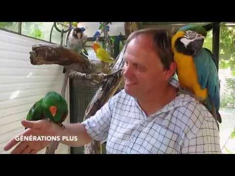Immersion chez un passionné d\'oiseaux exotiques
