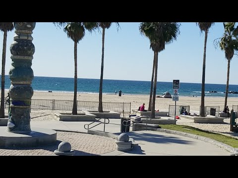Cold Day At Venice Beach