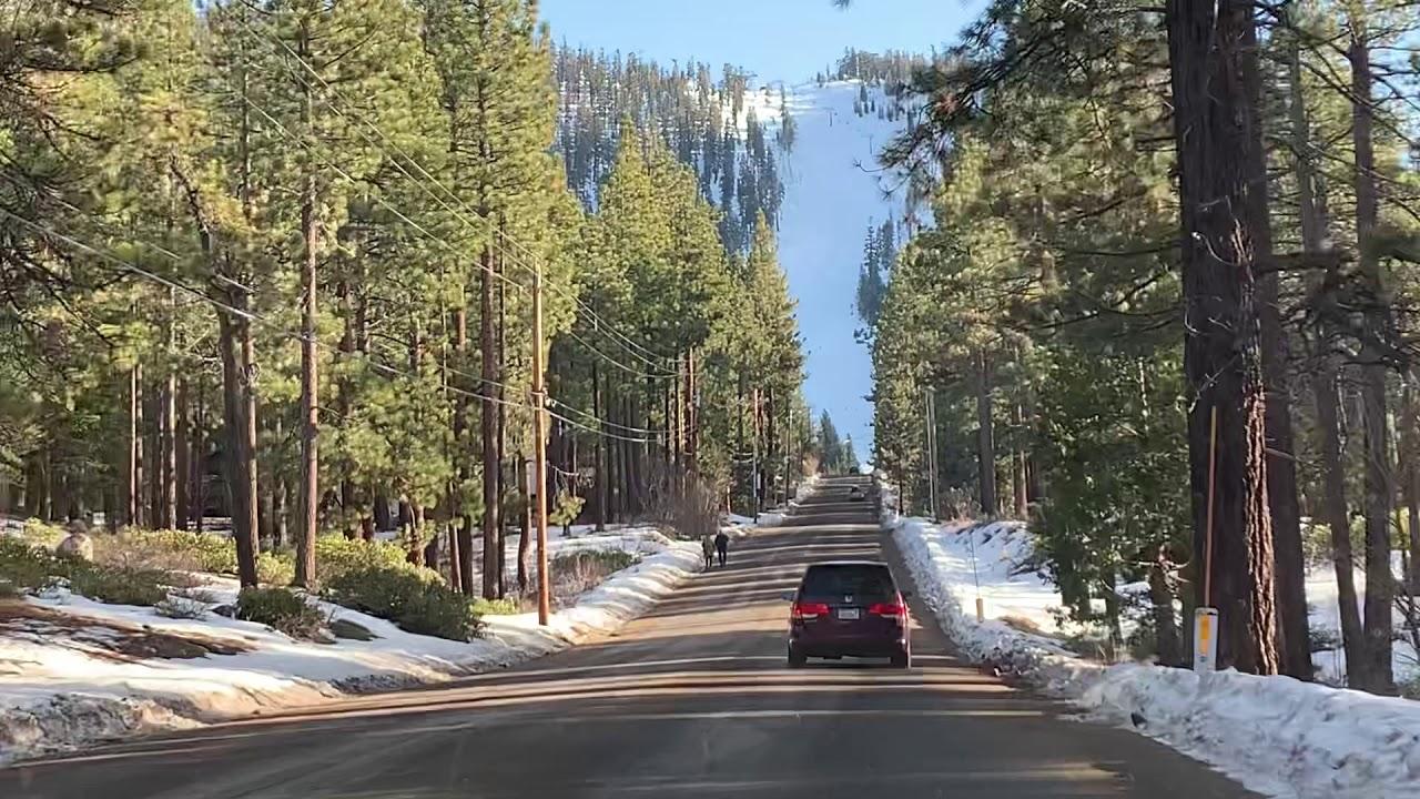 зеленый снегопад в калифорнии фото столе должны