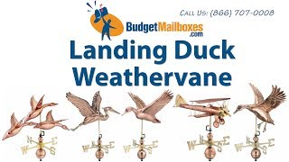 Budgetmailboxes.com | Good Directions 9605v1 Landing Duck Weathervane - Blue Verde Copper