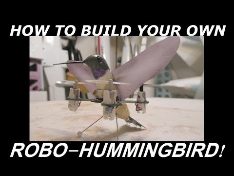 RC Robo HummingBird Quadcopter!