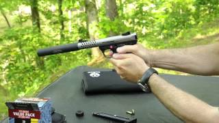Hunting with a Silencer on your pistol: Shorter barrel length allows for wider ammo choices