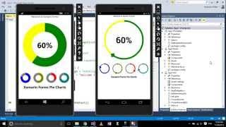 Xamarin Forms with Visual Studio Part 17 [Pie Charts, Custom Controls]