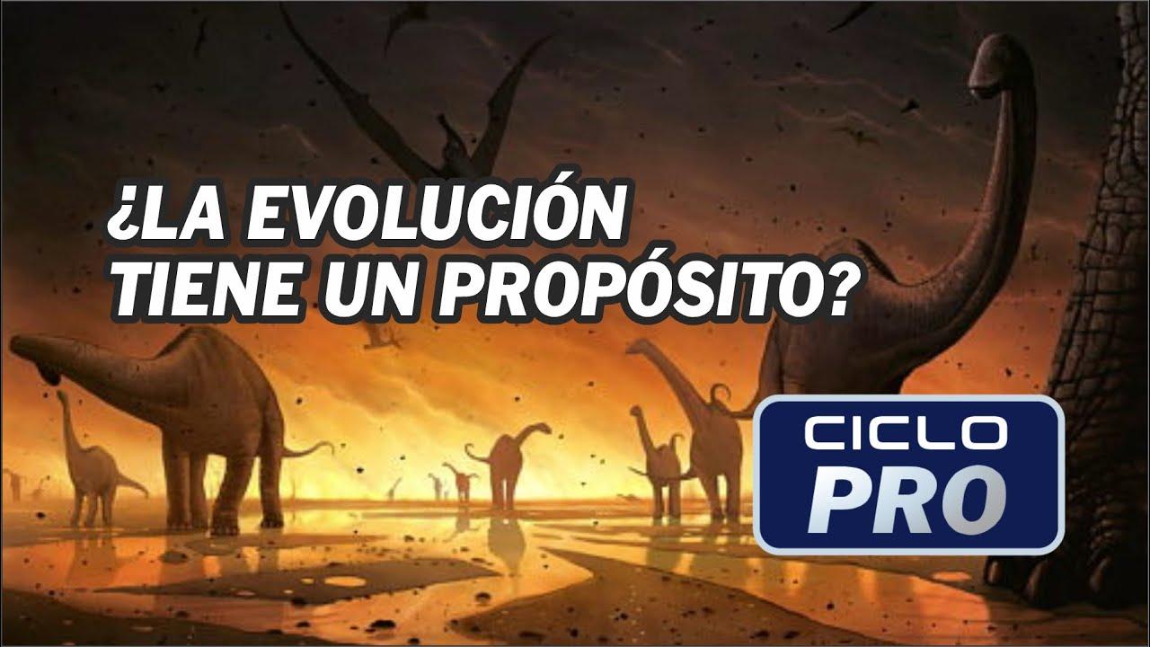 BIOLOGÍA - ¿La evolución tiene propósito?
