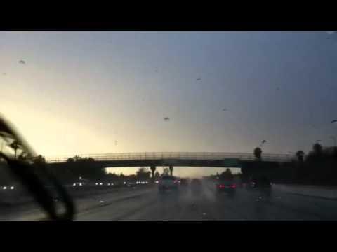 Thunderstorm P2 (El Monte, CA)