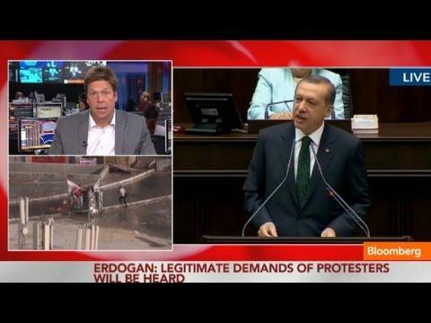 Turkish Prime Minister Erdogan Calls for Brotherhood in Unrest