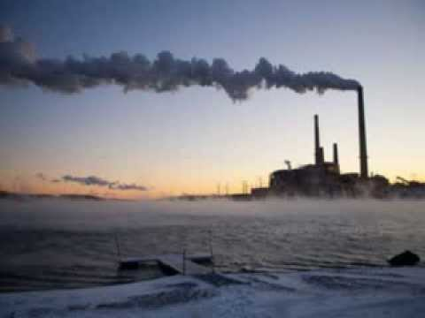 effect of climate change on animals essay This article is the result of dozens of interviews and exchanges with climatologists and researchers in related fields and reflects hundreds of scientific papers on the subject of climate change.
