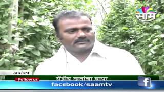 Ashok Aswar's Panpimpri (Piper longum)success story